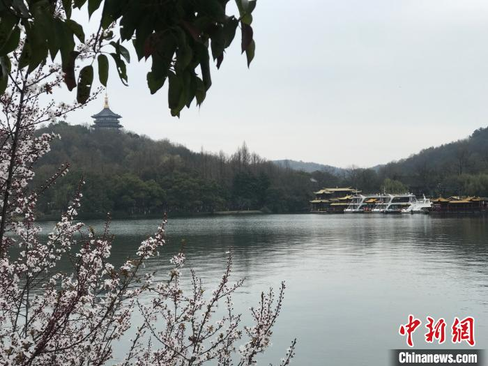 杭州97家宾馆住宿降价 你想去游玩吗?